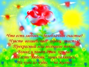 открытки, роза, позитив