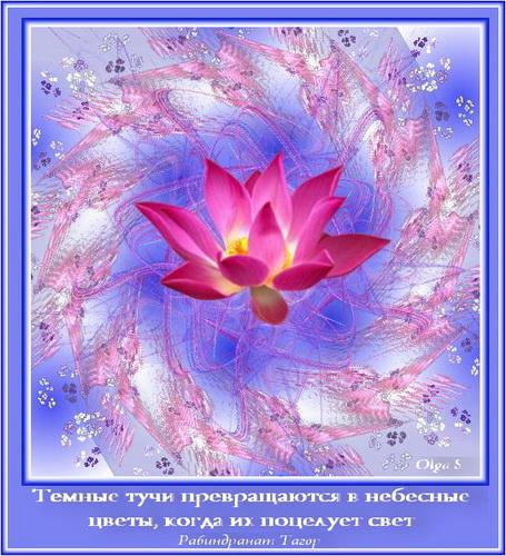 Мотиватор Небесные цветы