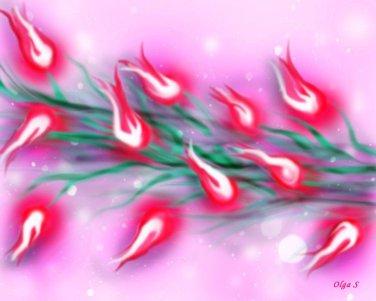 огоньки тюльпанов