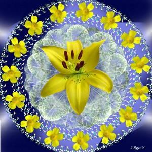 Мандала из жёлтых цветов