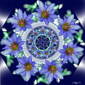 Мандала из голубых цветов