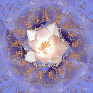 Мандала с белым цветком