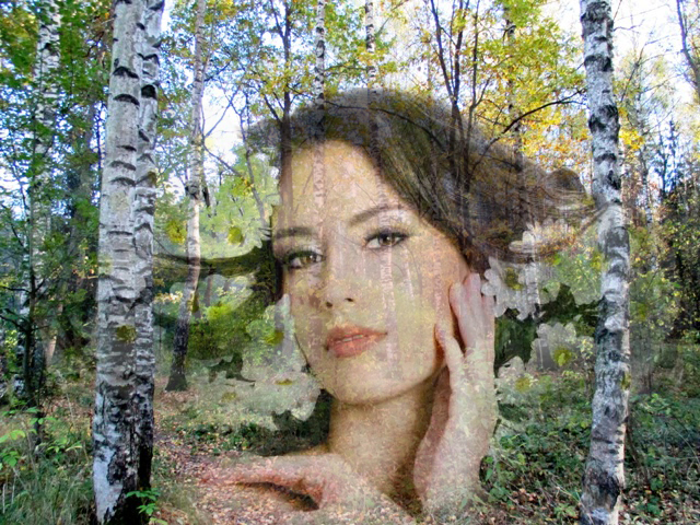 душа леса
