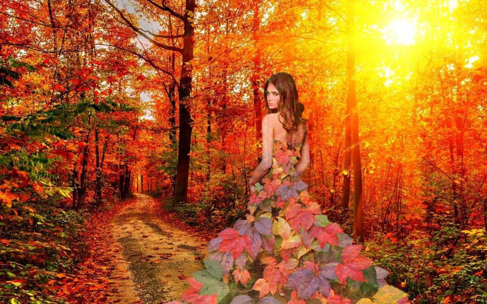 Коллаж Осень
